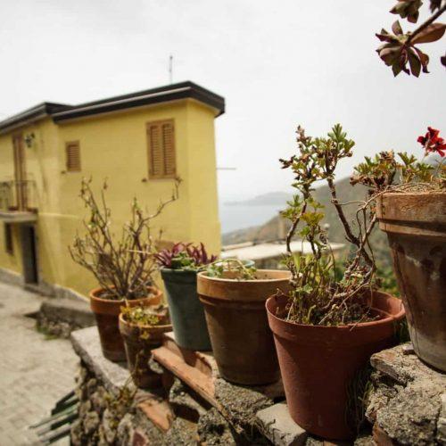9. Цветы в Форце ди Агро